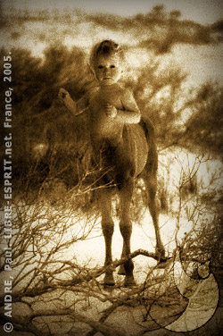 Bébé centaure